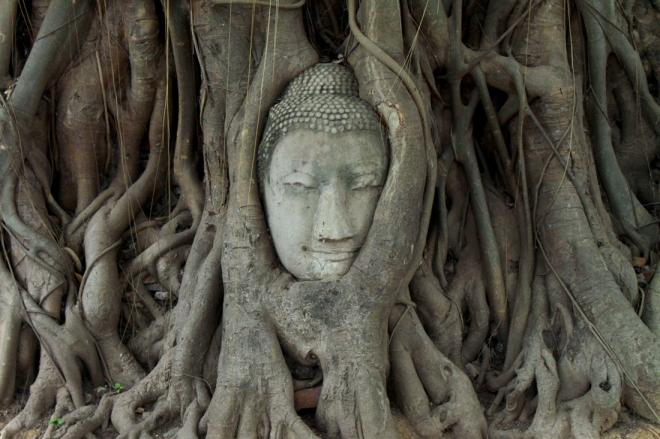 Ayutthaya_Blog