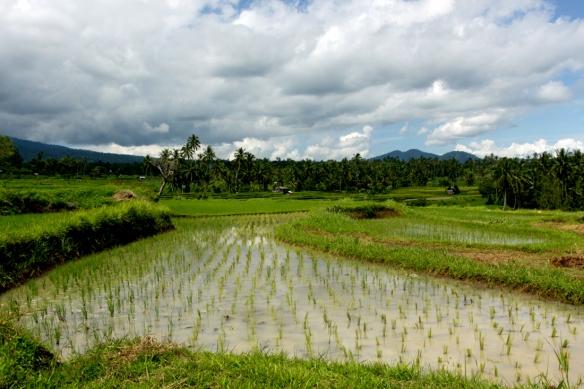 BatuSangkar_Blog